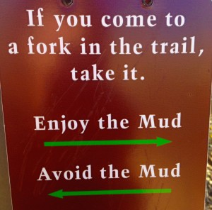 if you come to a fork in the trail, take it
