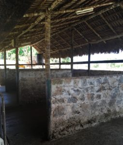 Finca Marta, Armesia, havana, Cuba, organic farm
